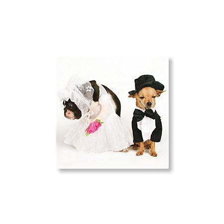 Happy Couple Save the Date Cards