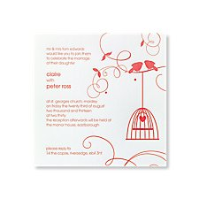 Little Lovebirds Day Invitation